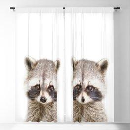 Baby Raccoon Portrait Blackout Curtain