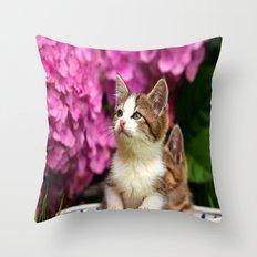 Kittens in bowl Throw Pillow