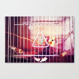 99. Canvas Print