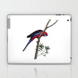 Crimson Rosella Laptop & iPad Skin
