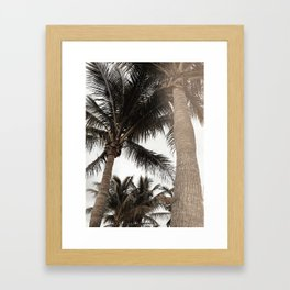 Tropical Breeze and Palm Trees Framed Art Print