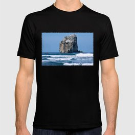 Witches Rock * Costa Rica T-shirt
