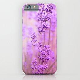 Lavendula iPhone Case