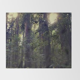 Sunrays in the Redwoods Throw Blanket