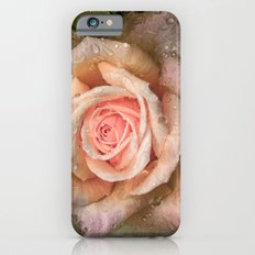 Vintage rose with water drops iPhone 6s Slim Case