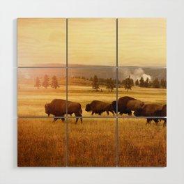Bison at Yellowstone Wood Wall Art