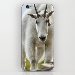 The Ups and Downs of Being a Mountain Goat No. 3 iPhone Skin