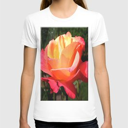 The Subject is Roses, 102 T-shirt