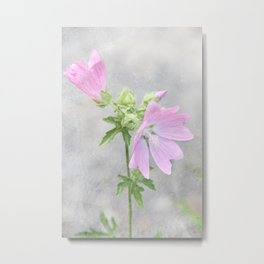 Pink Mallow Metal Print