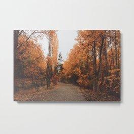 Carnelian Autumn Metal Print