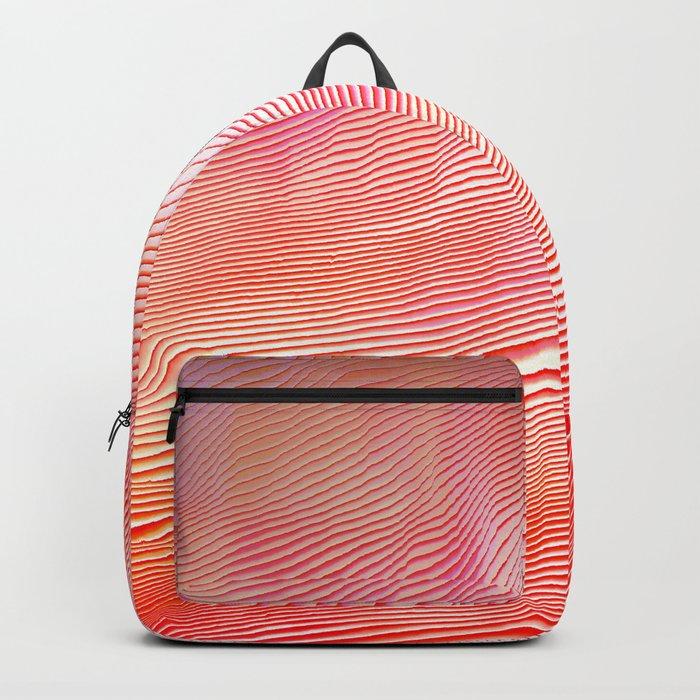 Sundown reflection Backpack
