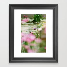 Colorful Lilies Tranquil Pond Framed Art Print