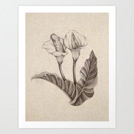 Born Flowers Art Print