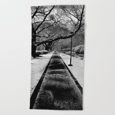 Snowblind (Colorless Section) Beach Towel