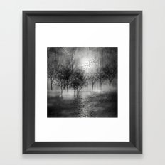 Black and White - Paisaje y color II Framed Art Print