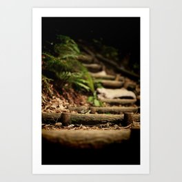 Steps to Japan Art Print