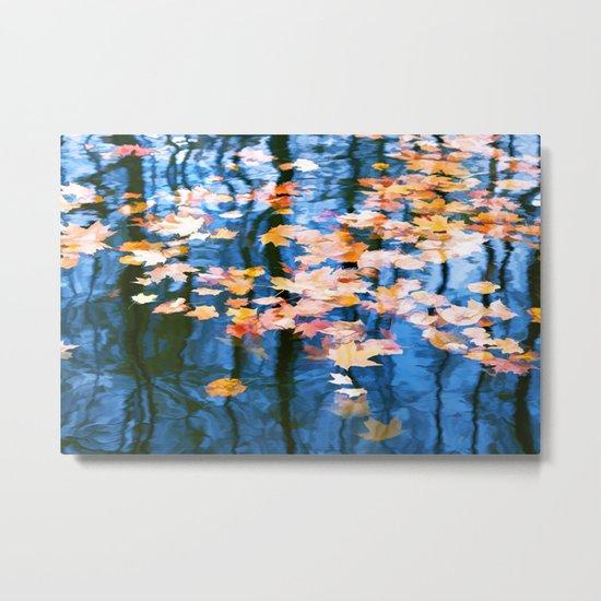 Fallen leaves in water Metal Print
