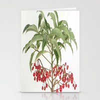 spice Stationery Cards featuring Spice Berry  by taiche