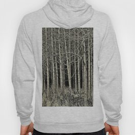 Cottonwoods Hoody