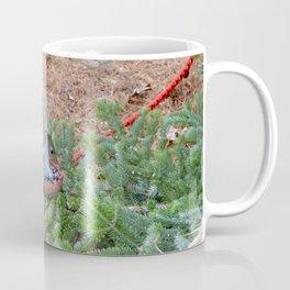 Squirrel. Coffee Mug