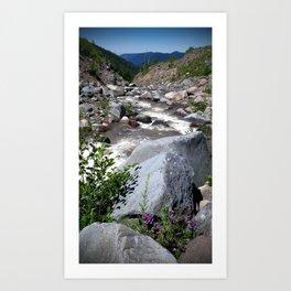 (#93) Mountain Flowers Art Print