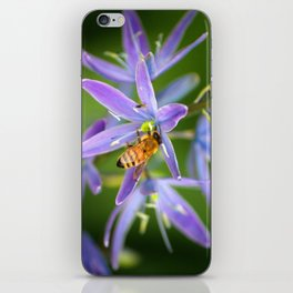 Bee and friend on purple flower iPhone Skin