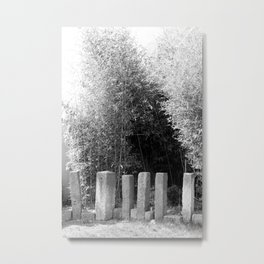 bamboo entrance Metal Print