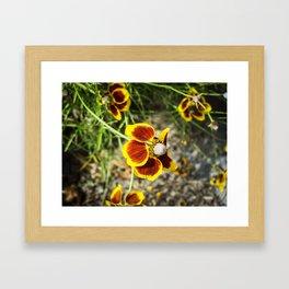 Red For Apple And Yellow For Lemon Framed Art Print