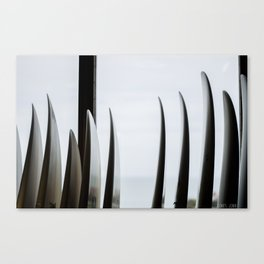 Through the surfboards Canvas Print