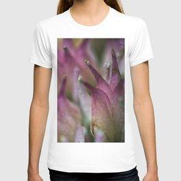 Stardust flower closeup T-shirt