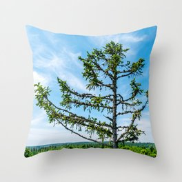 Conifer Tree Top Throw Pillow