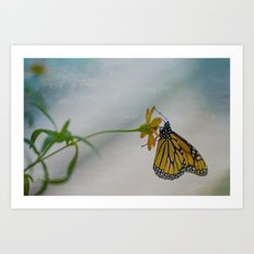 Butterfly in the clouds Art Print
