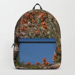 Desert Wildflowers & Cacti in Spring Backpack