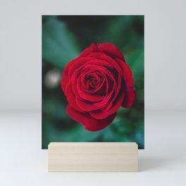Romantic Red Rose Mini Art Print