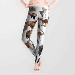 Wild animals Leggings