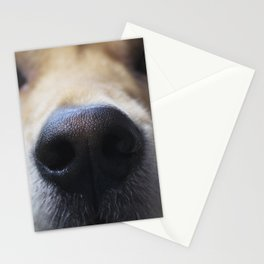 Golden Nose Stationery Cards