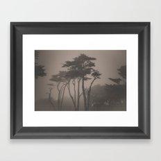 Sutro Shadows Framed Art Print