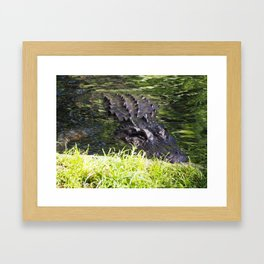 See Ya Later, Gator Framed Art Print