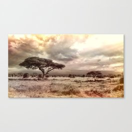 African Savannah Canvas Print