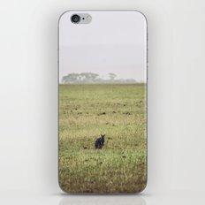 Wallaby iPhone & iPod Skin