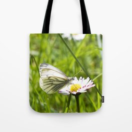 WHITE BUTTERFLY on COMMON DAISY Tote Bag
