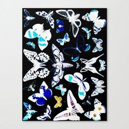 Metamorphosed Canvas Print
