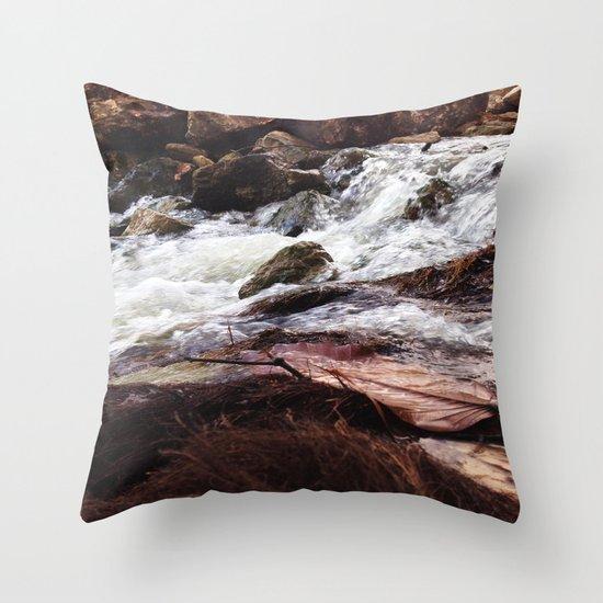 Brown Creek Throw Pillow