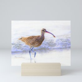 Shore Bird - Whimbrel with Sand Crab by Reay of Light Mini Art Print