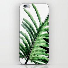 Leaves 2 iPhone & iPod Skin
