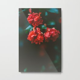 Pomegranate Study, No. 2 Metal Print