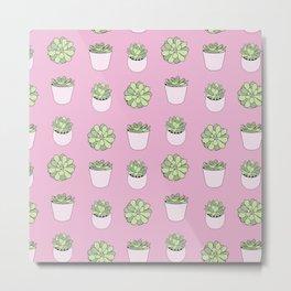 pink suculents in flowerpots Metal Print