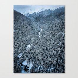 DVSN Canvas Print