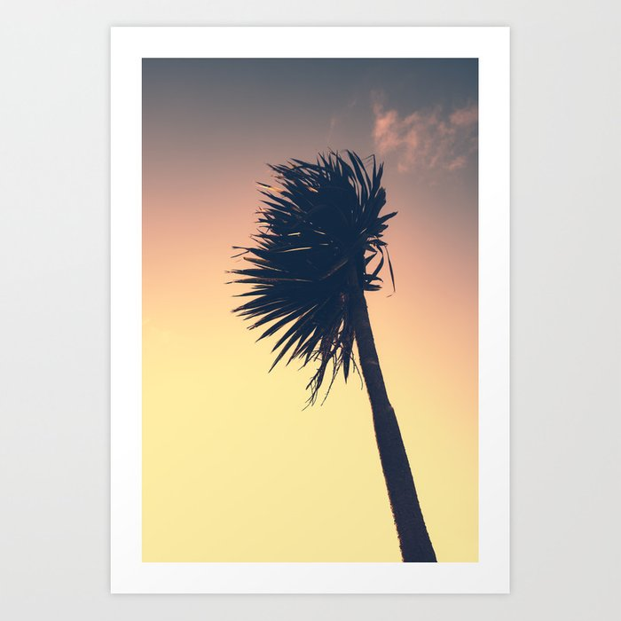 Fistral Palm Art Print