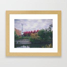 Fall in Chicago Framed Art Print